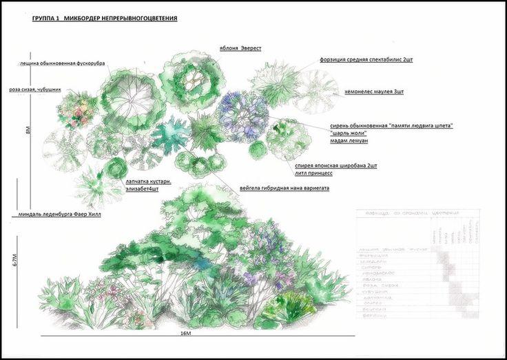 Пейзажная группа растений - Поиск в Google