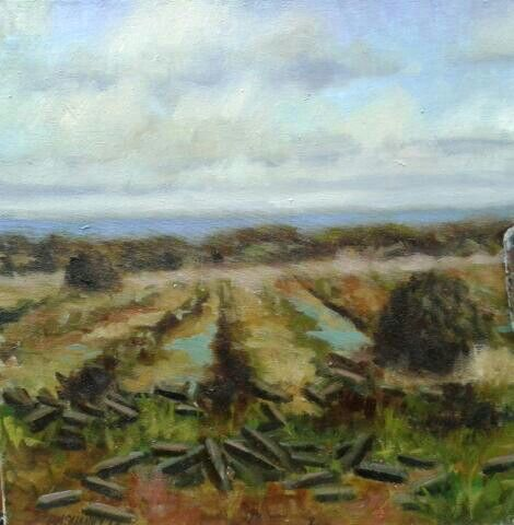 "Bog land in sweet donegal.oil on canvas.14""x14""."