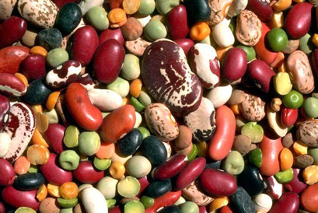 Ammollo legumi e cereali