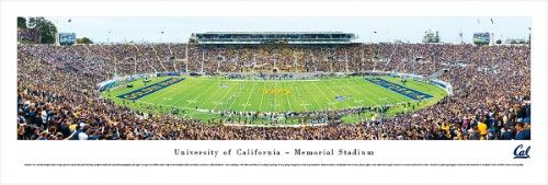 California Golden Bears Football - 50 Yard Line - Blakeway Panoramas Print, Unframed