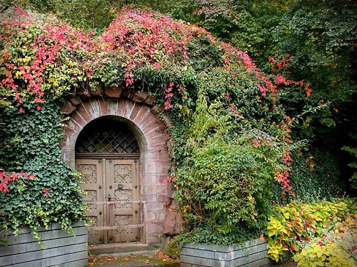 Elegant Ein verwunschener Eingang neben dem Restaurant Zoo Terrassen