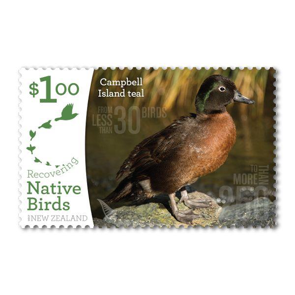 2017 | Recovering Native Birds