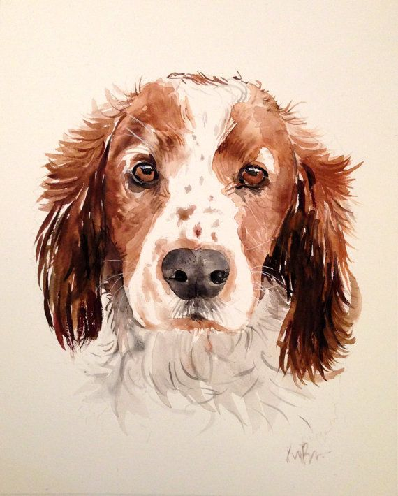Custom pet portrait. Original watercolor painting. Dog por Kribro Más