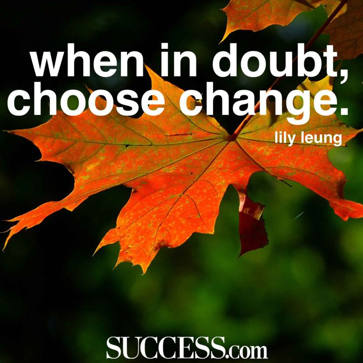 21 Insightful Quotes About Embracing Change