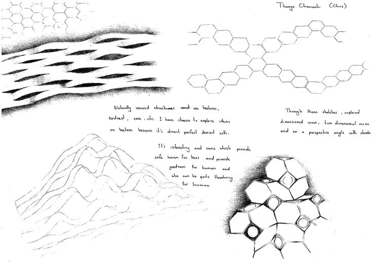 Beehive Ideas Drawing 1