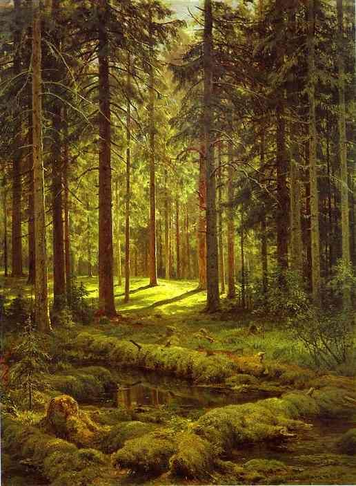 Coniferous Forest. Sunny Day by Ivan Shishkin