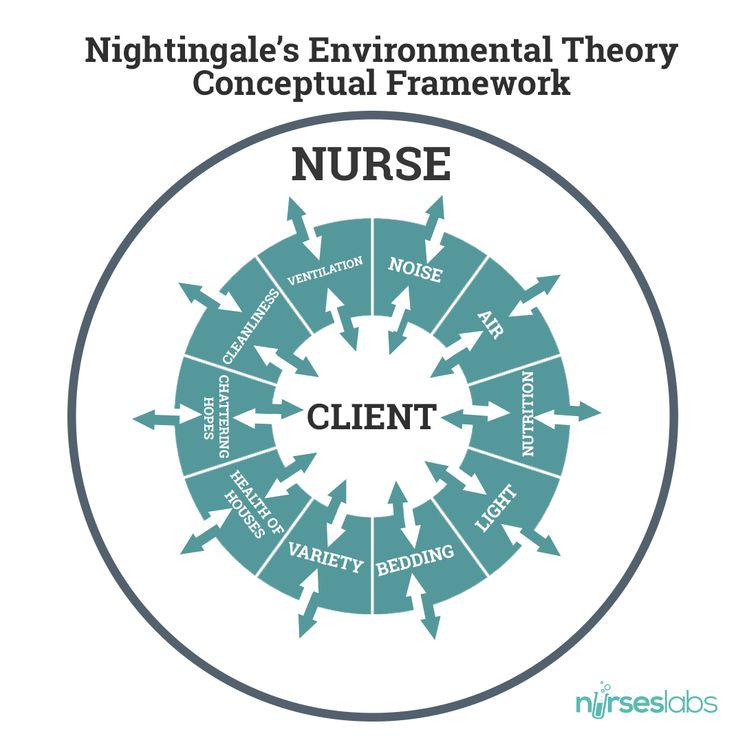 nursing theories florence nightingale essay