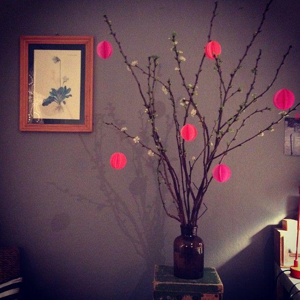 Tusen takk til @Marit Falkenberg for tips om kirsebærgrener og til @katinkapisani for fantastiske #neon rundinger!❤ Ment to be!