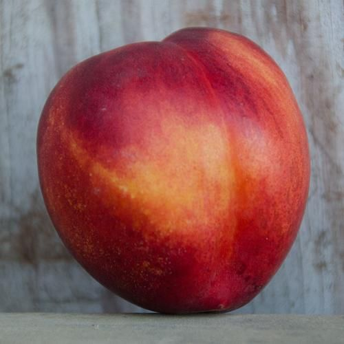 Organic Nectarines | Organic Fruit Delivery / Frog Hollow