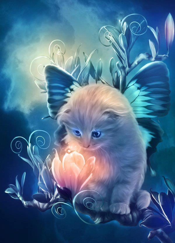 Cat Fantasy so Cute