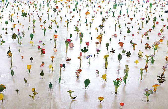 「芸術植物園」が愛知県美術館で開催 - 古代から現代までの植物表現を展示 | ニュース - ファッションプレス