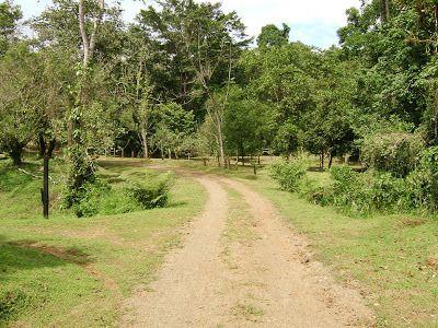 Costa Rica - Karibik - 202 ha Farm zu verkaufen neuer Kaufpreis 499.000 Euro. http://ift.tt/2Ik4blP