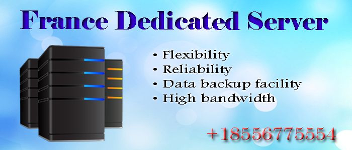 Get best France Dedicated Server Hosting Services for business website. it gives high security, data backup facility and more by choosing France Dedicated you will get also 24/7 maximum network availability and high traffic.  For more information visit - http://franceserverhosting.com/france-dedicated-server-hosting/