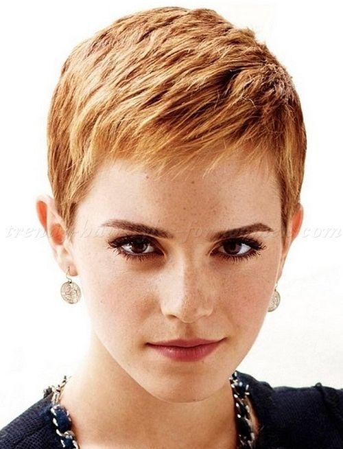 pixie cut, pixie haircut, cropped pixie - Emma Watson pixie cut