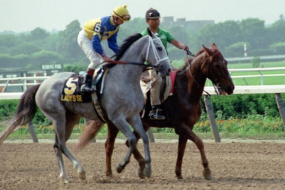 Lady's Secret Strike and Buddy's cousin and Easy Goer's mate