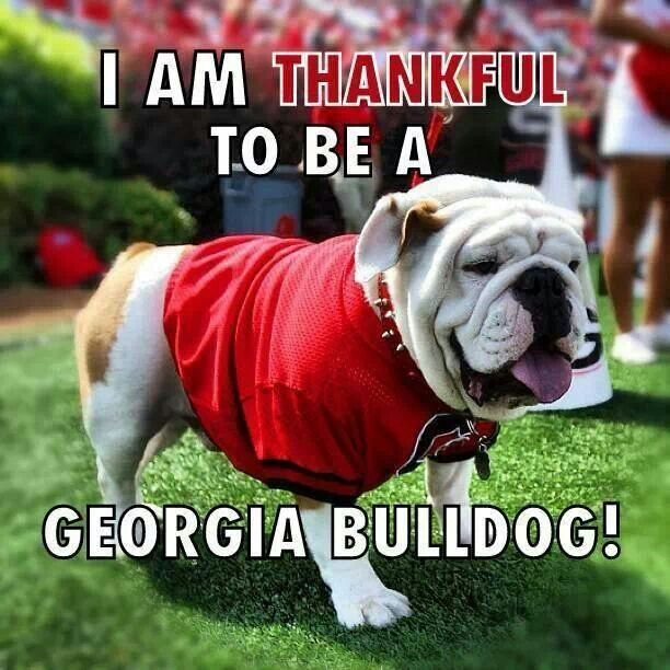 Its great to be a Georgia Bulldog!