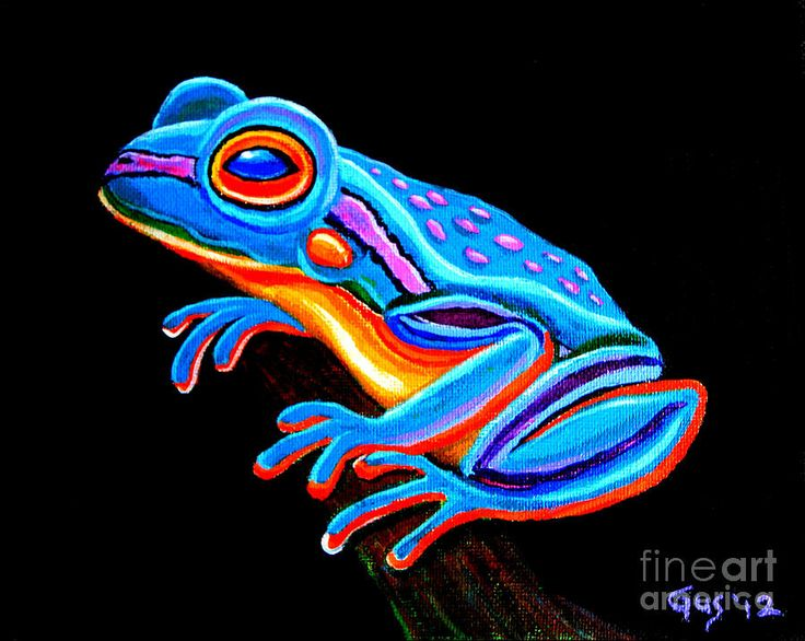 1000+ ideas about Frog Art on Pinterest | Frog ...