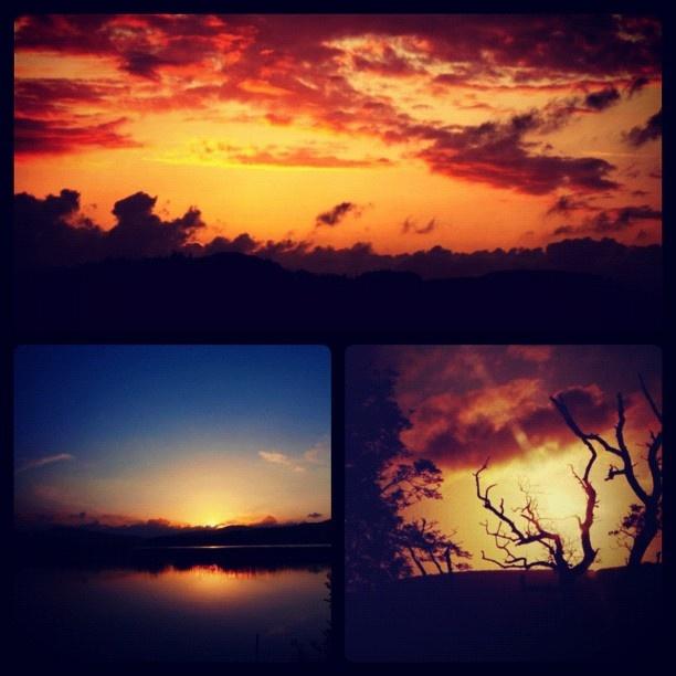 Follow me on instagram: wklize    website: www.claudiapelagatti.com