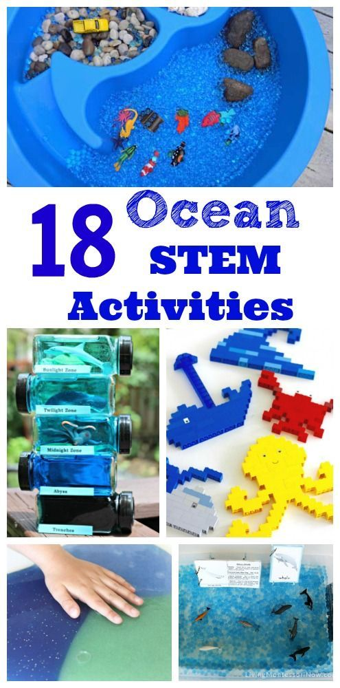 Love these ocean science & math activities for kids!  Great for learning about sharks, whales, ocean zones and more.