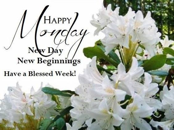 Happy Monday New Day New Beginnings Have A Blessed Week