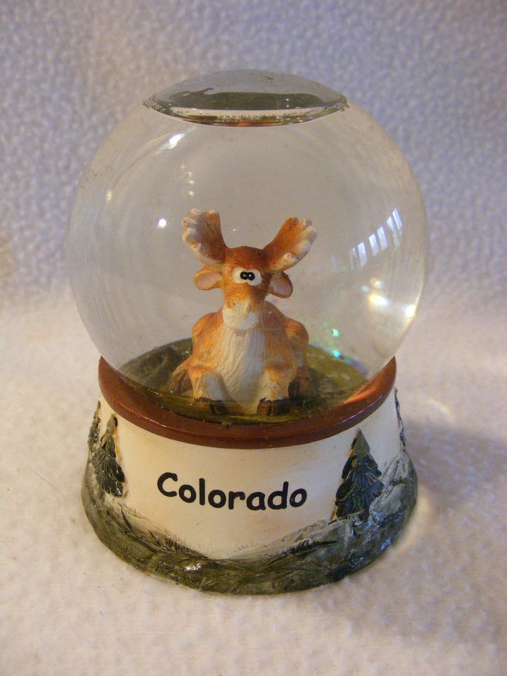 Moose Snow Globe Colorado Picclick Com Snowglobes And