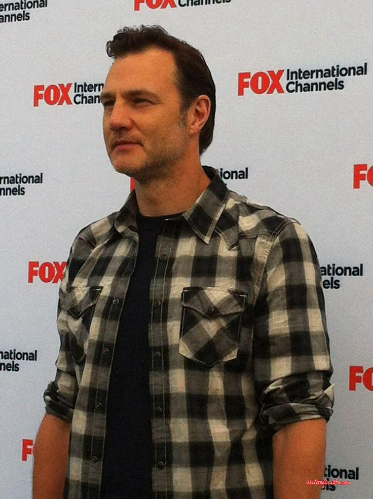 150 best DAVID MORRISSEY images on Pinterest | David ...