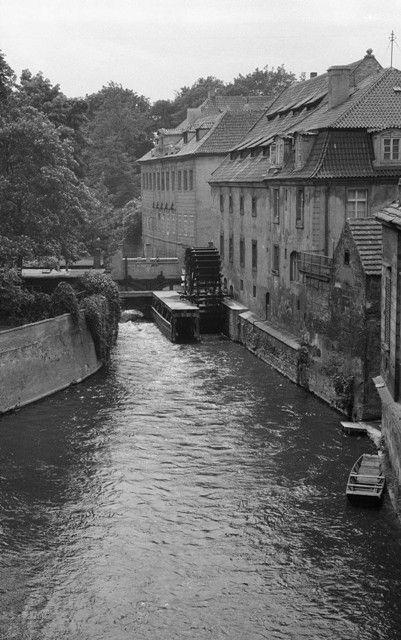 Čertovka (637-3) • Praha, červen 1960 • | černobílá fotografie, mlýnské kolo, hladina, budovy |•|black and white photograph, Prague|