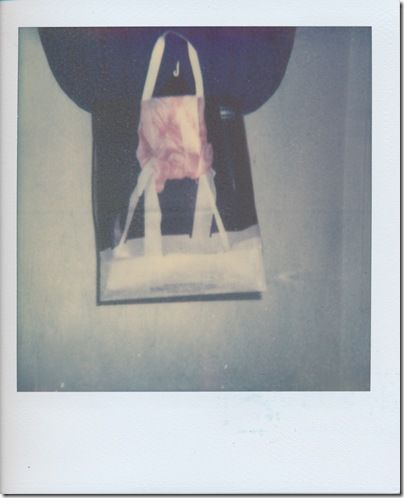 Husband in the Bag    Kamera: Polaroid One600   Film: Color Shade - Test Film 2010 by The Impossible Project