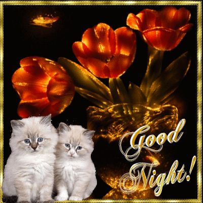 Everyday Cards/Good Night section. Send this beautiful ecard to anyone you love…