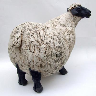 jjvincent.com - Sheep