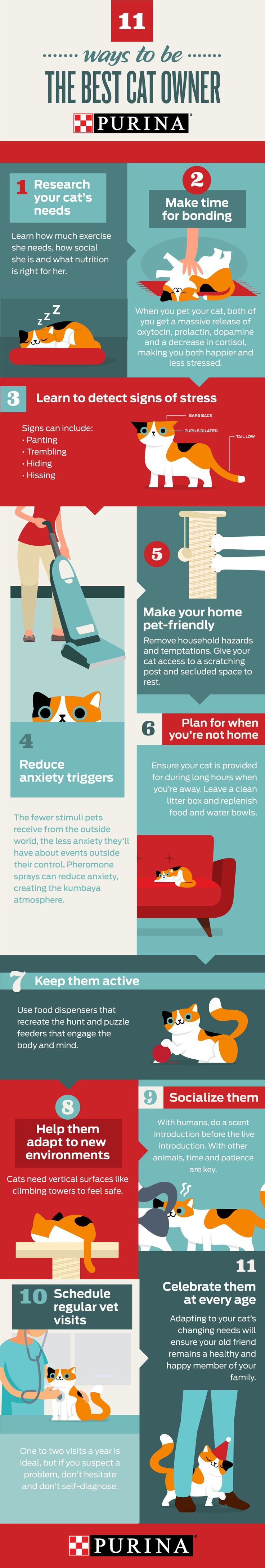 It's a new year and a new you! Be your best pet owner yet in 2018. Whether you're trying to help your cat lose weight or need healthy easy ideas for your pet, Purina is here to help you & your cat start off the New Year right! These 11 tips will put you on the path to becoming a responsible cat owner & helping you give your cat her best life possible. Click the image for more practical suggestions for keeping your pet happy and healthy throughout her life. For more pet tips, visit…
