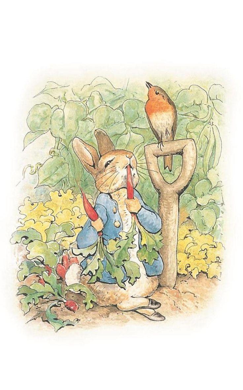 61 best Helen Beatrix Potter images on Pinterest | Beatrix potter ...