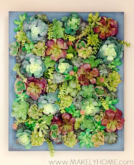 1000 Ideas About Succulent Wall Gardens On Pinterest