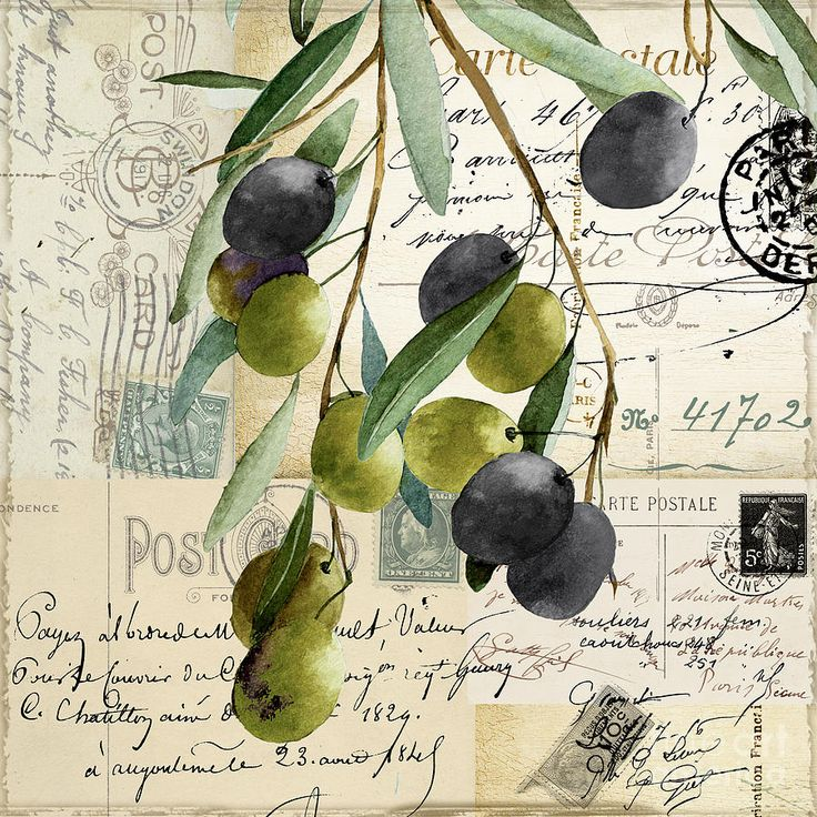 Olive Painting - Olivia II by Mindy Sommers