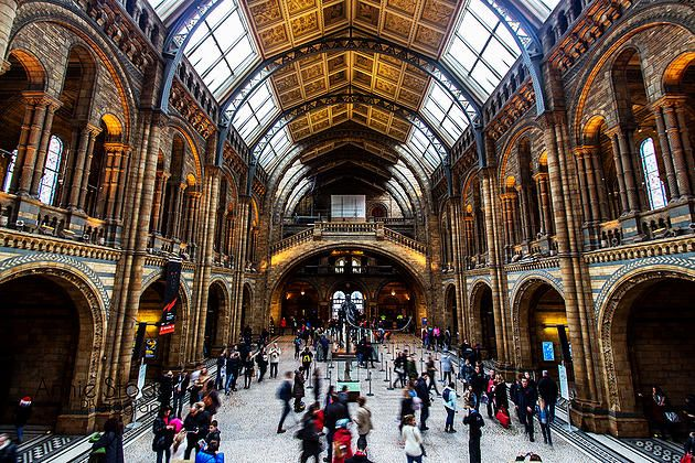Natural History Museum - London