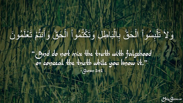 """""""And do not mix the truth with falsehood or conceal the truth while you know it."""" - Quran 2:42"""