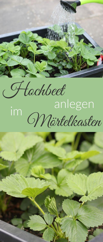 Hochbeet anlegen und bepflanzen im Mörtelkasten. Für Balkon und Garten geeignet. Für Blumen, Gemüse und Obst ideal. Anleitung auf meinem Blog.