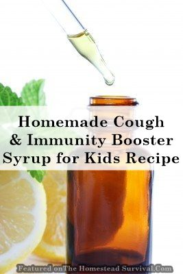 The Homestead Survival | Homemade Cough and Immunity Booster Syrup for Kids Recipe | http://thehomesteadsurvival.com