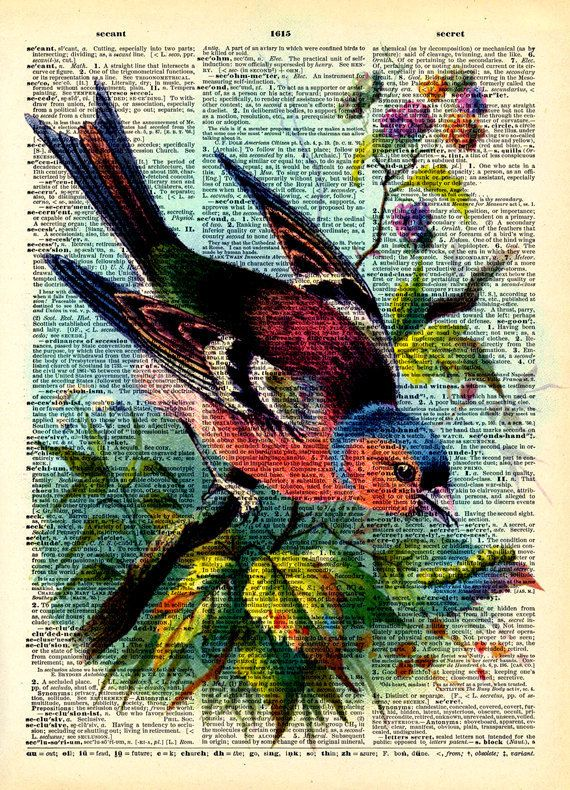 Vintage Dictionary Print - Colorful Rainbow Bird - Vintage Book Art Print - Woodland Natural History Upcycled Book Art