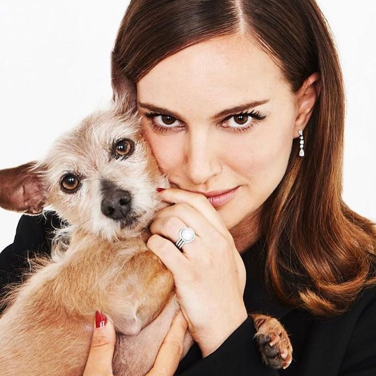 Natalie Portman Sexy hd Wallpapers, Images, Pics;Natalie Portmanis the star of hollywood, she is among the top Hollywood actresses. She is an actress, producer, and successful director of hollywood industry.She began her career with the French director Luc Besson.   #bikini pics of Natalie Portman #hot pics of Natalie Portman #Natalie Portman bikini images #Natalie Portman hot pics #Natalie Portman sexy hd wallpapers #sexy pics of Natalie Portman