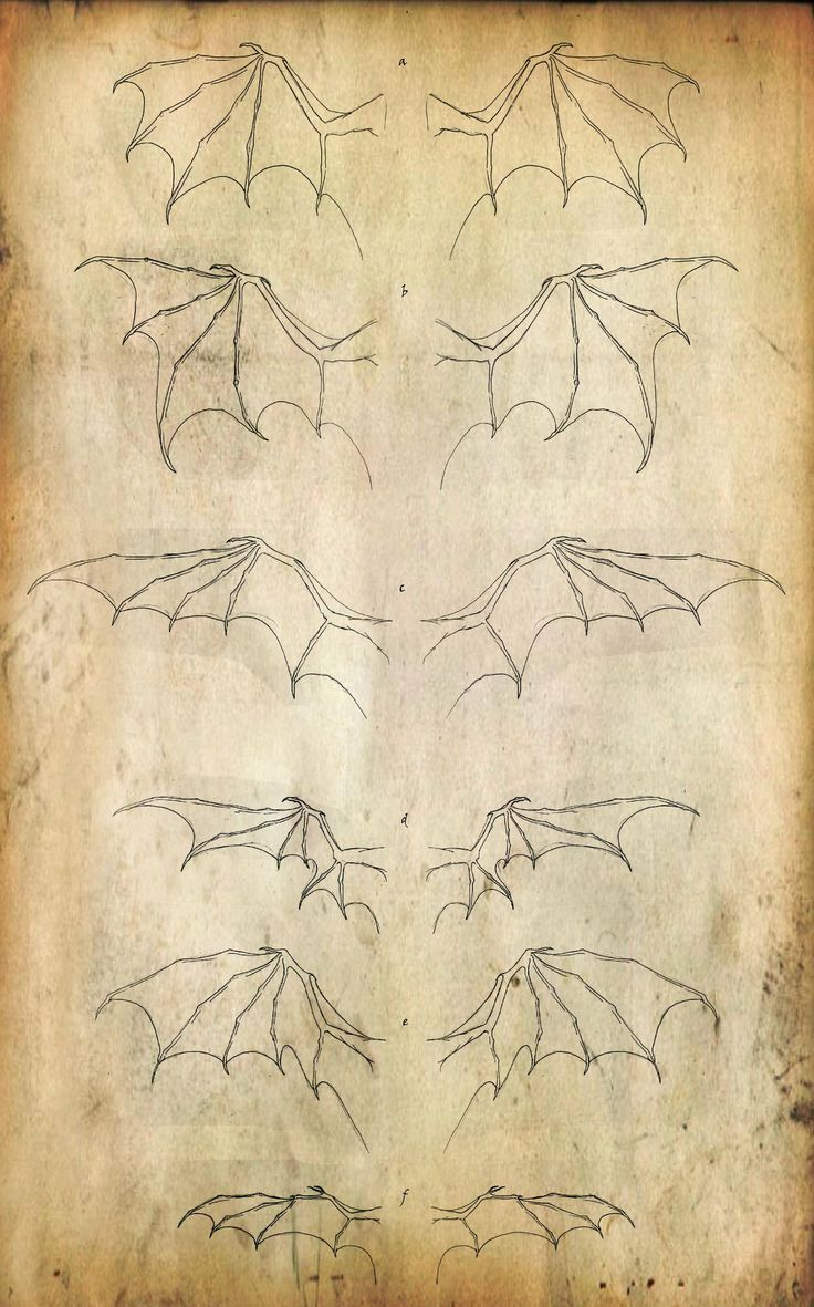 Wing Set by ~Kevin-Studios on deviantART the last set of wings!