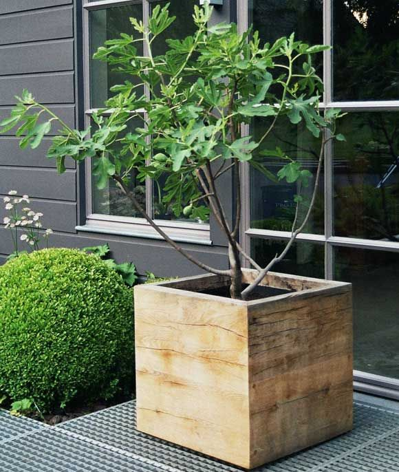 the perfect grey for greenery and fabulously simple wooden planter - Vasari