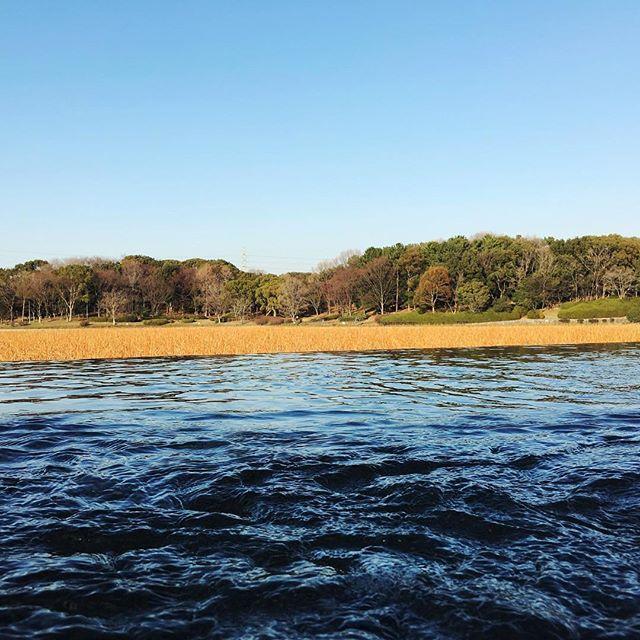 【hai_ta9】さんのInstagramの写真をピンしています。《【どこなーん】 今日はめっちゃ良い天気やったな(◍′◡‵◍) #青空#blue#bluesky#空#雲#山#川#林#湖木#馬#山羊#羊#カモ#亀#カメラ女子#桃#動物#自然#大自然#冬#大阪#堺#河南#Osaka#Japan#鍋》