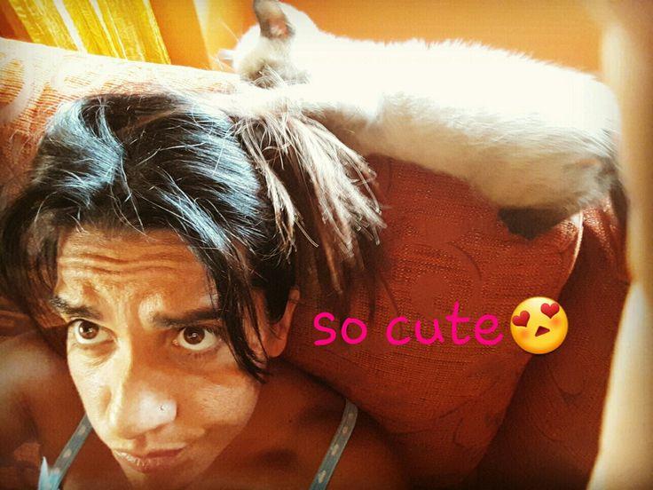 My cat 😍😍
