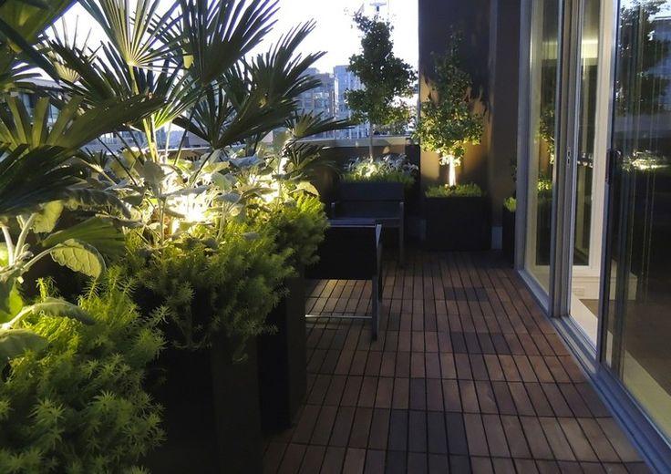 grüne Pflanzen, Mini Bäume und Palmen in Pflanzkübeln