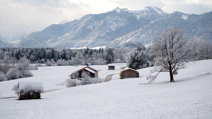 Wetter: Deutschland kommt unter die Frost-Haube - News Inland - Bild.de