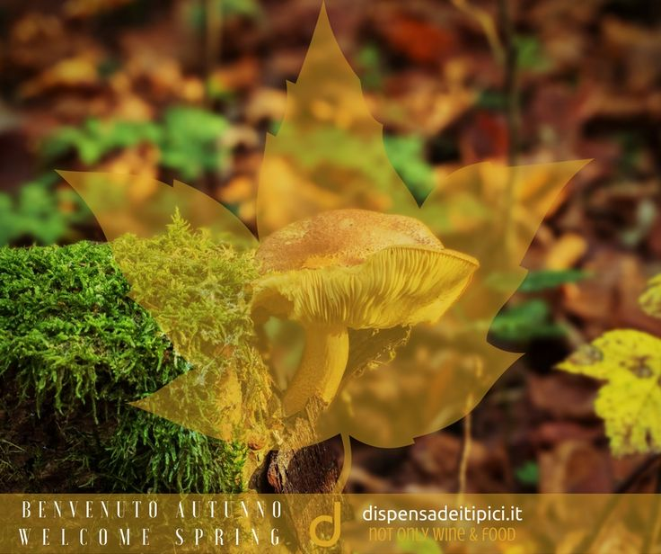 Benvenuto Autunno [IT] Welcome Autumn [EN]  www.dispensadeitipici.it #dispensadeitipici #autumn #autunno #leaf #foglia