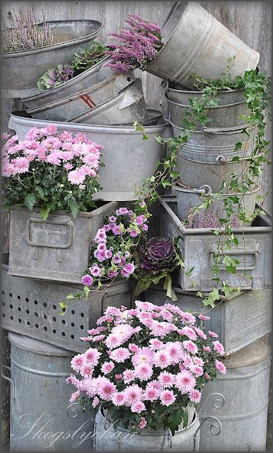 Just went to the antique street fair to pick up a BUNCH of wonderful galvanized buckets and tubs for a tower of pails and flowers! can hardly wait for spring!!!