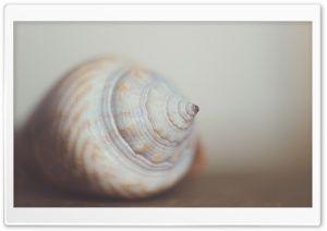 Macro HD Wide Wallpaper for Widescreen