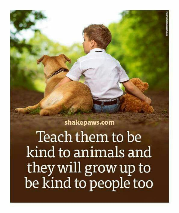 Be kind.... .